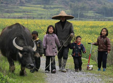 Farmer, kids, and a water buffalo Beijing Hikers Wuyuan Trip, Jiangxi Prov.