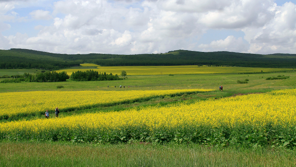 Explore China: Hulunbuir Grasslands, Inner Mongolia ...