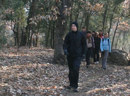 Walking through woods, Beijing Hikers Ingot Village and Tanzhe Temple hike, 2009-11-29