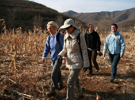 Walking through cornfields, Beijing Hikers War Tunnels and Lost Village hike, 2009-12-03
