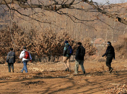 Orchards, Beijing Hikers Long Way to Catch the Train hike, 2009-12-06