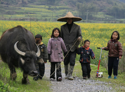 Farmer, kids, and a water buffalo Beijing Hikers Wuyuan Trip, Jiangxi Prov.