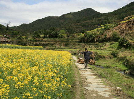 Path through the fields, Beijing Hikers Wuyuan Trip, Jiangxi Prov.