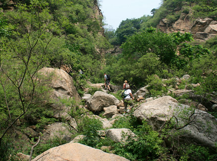 Trees and rocks, Beijing Hikers Great Flood hike, 2010-06-06