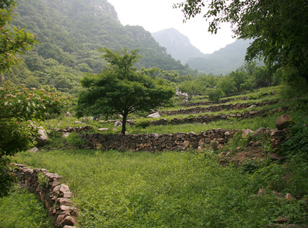 Terraces, Beijing Hikers Great Flood hike, 2010-06-06