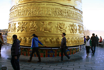 Golden bell, Beijing Hikers Yunnan scouting, November 2010