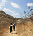 Our walk took us past fruit tree orchards, Beijing Hikers Swedish Embassy hike