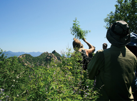 From the top of the first summit, Beijing Hikers LongevityVillageDeling, July09, 2011