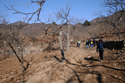 at harvest time, Beijing Hikers BigBlackMountain, November20, 2011