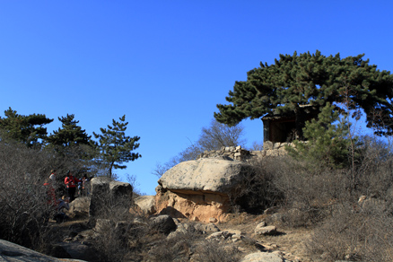 the shrine and the pine, Beijing Hikers Gubeikou GreatWall Loop Midweek, November02, 2011