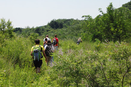 a relatively flat section of trail, Beijing Hikers Flower wood and lily villiage