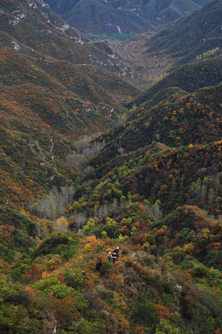 a forested valley, Beijing Hikers Zhenbiancheng Great Wall, October04,2012