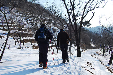 chestnut tree orchards, Beijing Hikers Zhuangdaokou Great Wall and Hot spring, Dec26, 2012