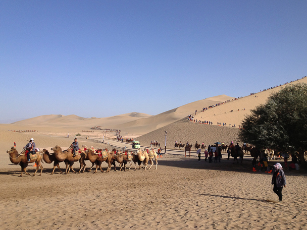 Camels and sand dunes at Crescent Lake, near Dunhuang, Beijing Hiker's Journey from the West, 2013/10