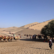 Camels and sand dunes at Crescent Lake, Beijing Hiker's Journey from the West, 2013/10