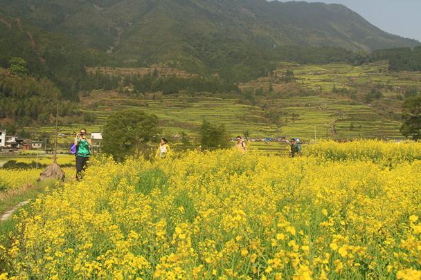 A sunny moment! - Wuyuan County, Jiangxi Province, 2014/03