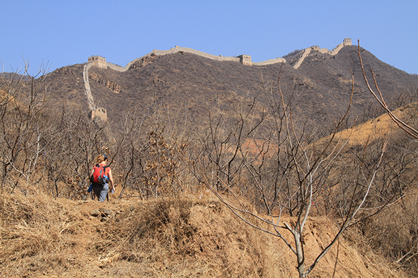A line of Great Wall leads up to a peak - Bricks in the Wall hike, 2014/03/15