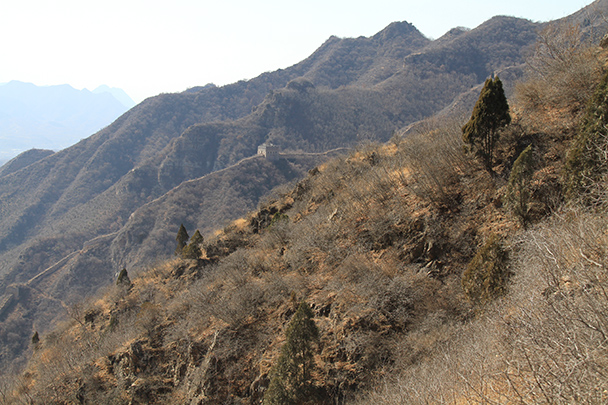 More Great Wall in the hills - Bricks in the Wall hike, 2014/03/15