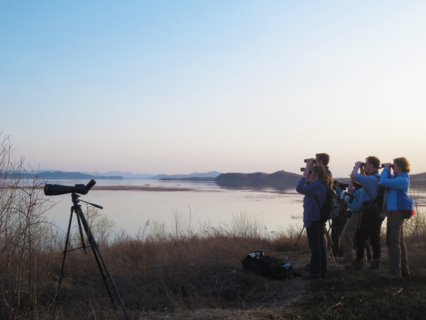 Sunset is a good time to spot birds - Miyun Birdwatching overnighter, 2014/03/29-30