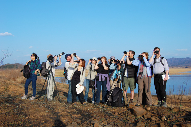 Where have all the birds gone? - Miyun Birdwatching overnighter, 2014/03/29-30