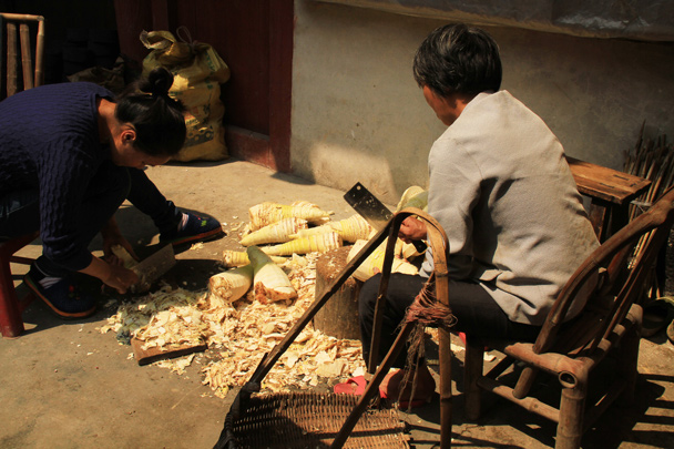 Chopping up yams, one of the staple foods in the area - Hakka Tulou Clusters and Xiamen, Fujian Province, 2014/04