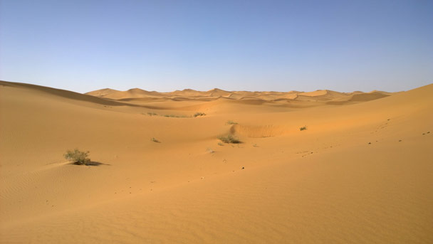 Dunes as far as the eyes can see - Alashan Desert, Inner Mongolia, 2014/05