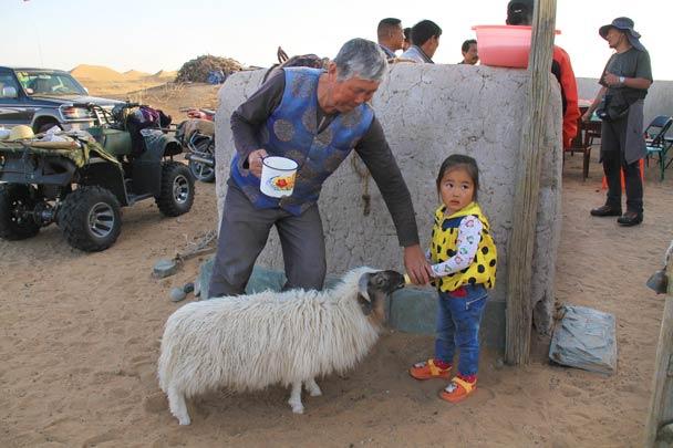 Feeding a wee sheep - Alashan Desert, Inner Mongolia, 2014/05