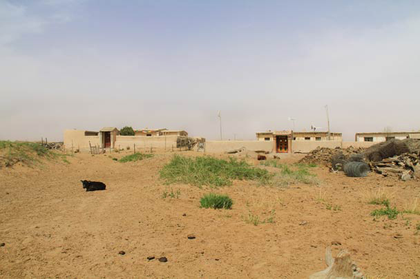 Nearby the temple were a few small dwellings - Alashan Desert, Inner Mongolia, 2014/05