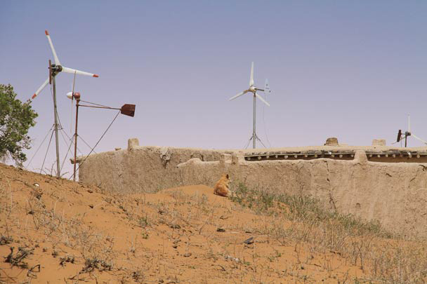 Windpower and a camouflaged dog - Alashan Desert, Inner Mongolia, 2014/05