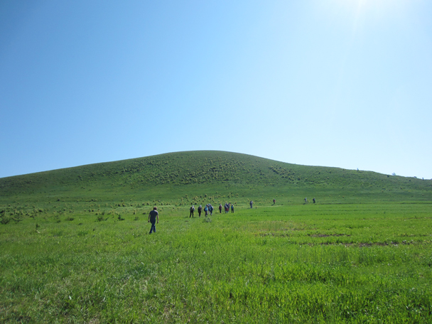 We started our first hike with a walk beside a field of buckwheat -  Bashang Grasslands trip, 2014/7