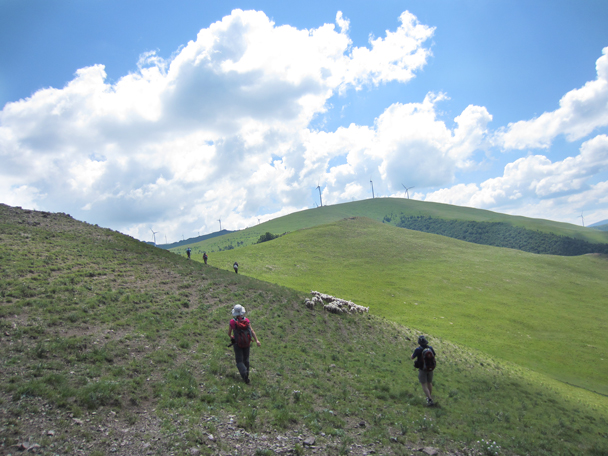 We hiked through the hills, meeting a flock of sheep on the way -  Bashang Grasslands trip, 2014/7