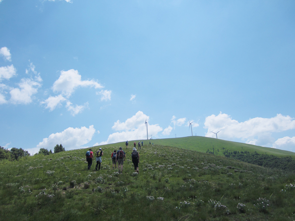 We kept walking up the ridgeline, aiming for a high point -  Bashang Grasslands trip, 2014/7