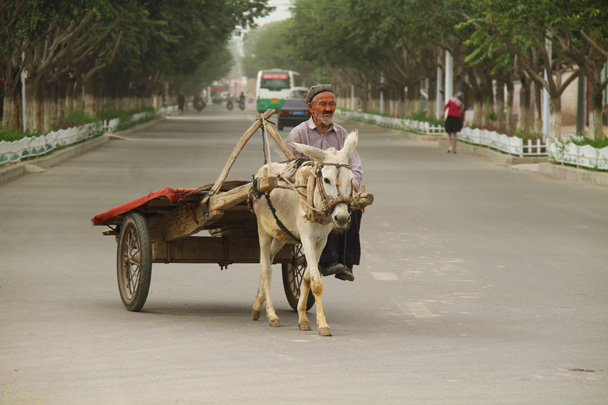 In Kuqa we saw a lot of donkey and cart arrangements - Along the Silk Road from Korla to Kashgar, 2014/06