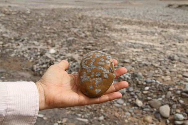 A smooth stone from the river. Some of us like to collect interesting rocks - Along the Silk Road from Korla to Kashgar, 2014/06
