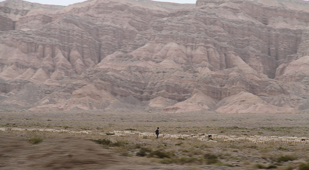 Sheep below the cliffs - Along the Silk Road from Korla to Kashgar, 2014/06