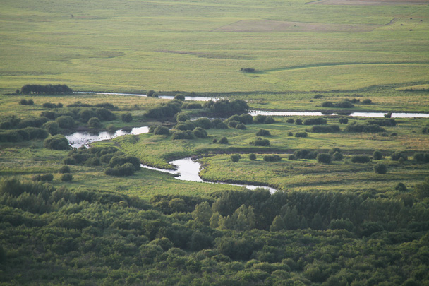 Rivers meandering through forested areas - Hulunbuir Grasslands, Inner Mongolia, 2014/07