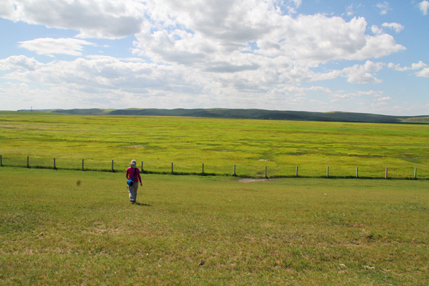 A view of the grasslands - Hulunbuir Grasslands, Inner Mongolia, 2014/07