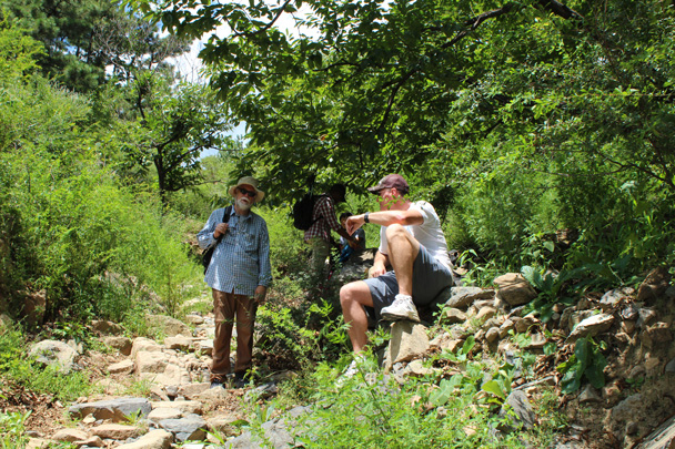 After coming down from the Great Wall, we walked a field trail - Zhuangdaokou Great Wall to the Walled Village, 2014/07/12