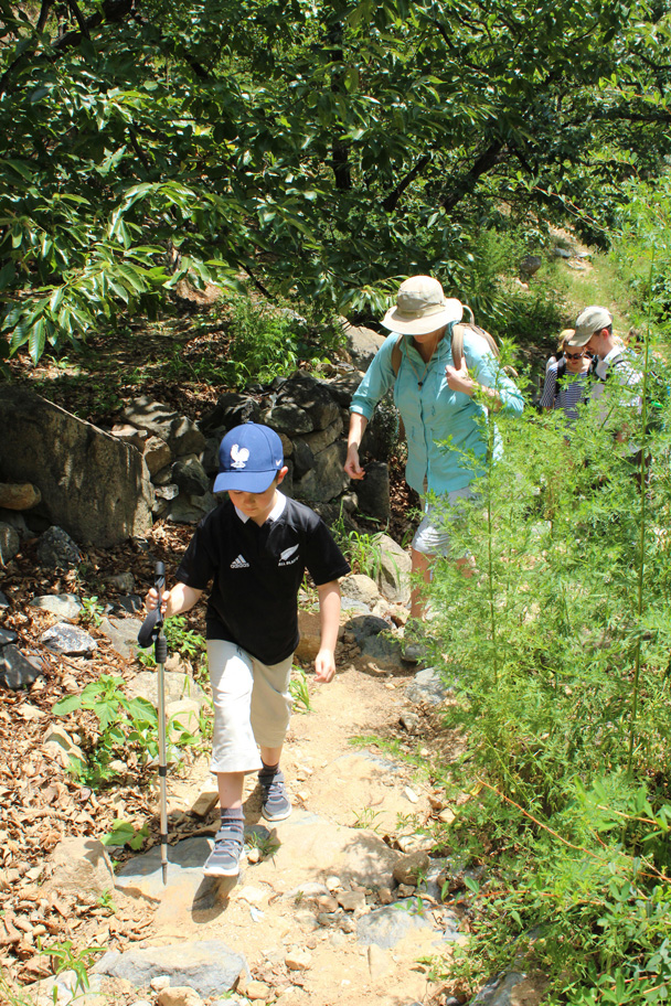 Continuing along the field trail - Zhuangdaokou Great Wall to the Walled Village, 2014/07/12