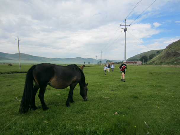 We hiked past a village, and this elegant horse with a very long tail - Bashang Grasslands trip, August 2014