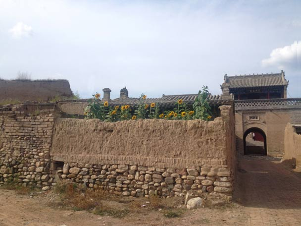 Sunflowers behind a mudbrick wall, right by the south gate of the North Castle - Yu County Overnight Trip 2014/08