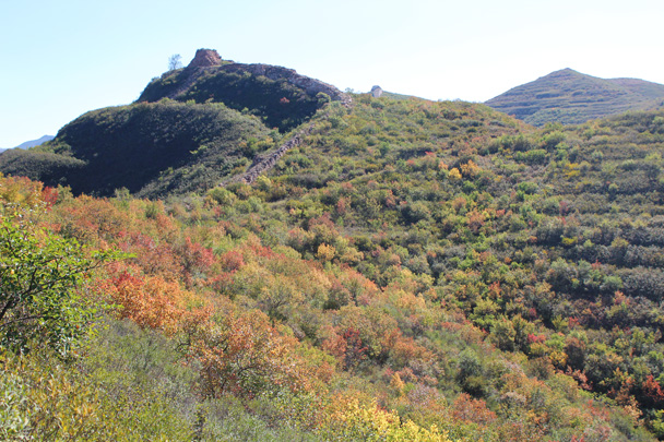 First glimpse of the colourful foliage - Yanqing Great Wall and High tower, 2014/09/27