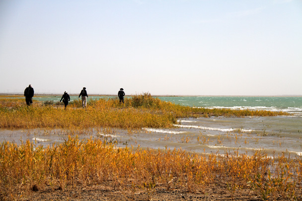 On the way to Jiayuguan we stopped for a walk at a huge reservoir - Journey from the West, 2014/10
