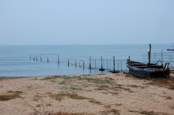 A seaside scene - Beidaihe Birding Trip, 2014/10