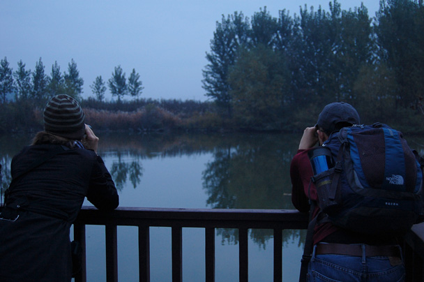 At this spot by the water we spotted a kingfisher - Beidaihe Birding Trip, 2014/10