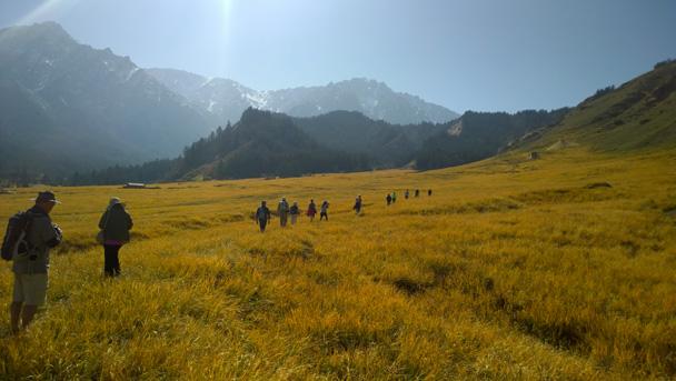 Grassy meadows - Zhangye Danxia Landform, Gansu Province, 2014/10