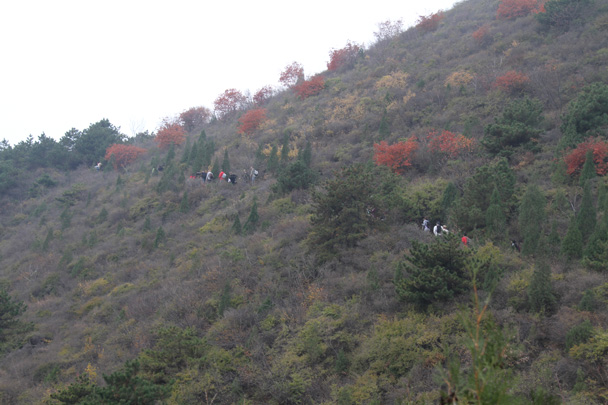 Starting off on the long trail through the hills - Yajishan Taoist Temples hike, 2014/10
