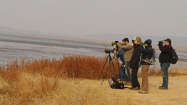Another good birding spot! - Miyun Reservoir Birdwatching Overnighter, 2014/11
