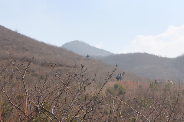We climbed up a big hill to find the Great Wall - Middle Route of Switchback Great Wall, 2015/02/21