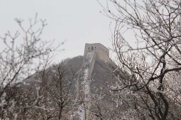 Looking up at the General's Tower from amongst the trees - Middle Route of Switchback Great Wall, 2015/02/21